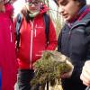 Určování autora hnízda – drozd zpěvný (Turdus philomelos)