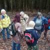 A první informace na kraji lesa