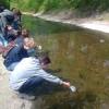 Lov vodních bezobratlých v Botiči