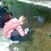 Vodní bezobratlí jako bioindikátory